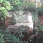 Lyola Luxury Private Cottage Maleny